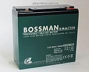 Тягові гелеві акумулятори Bossman Master 2020 року Дніпро